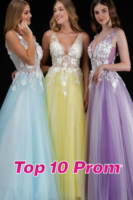 Top 10 Prom 2020 Catalog-Nina Canacci